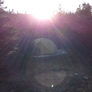 One of the few campsites I stayed in on the trail