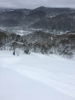 Fresh tracks in the best snow of the last decade!
